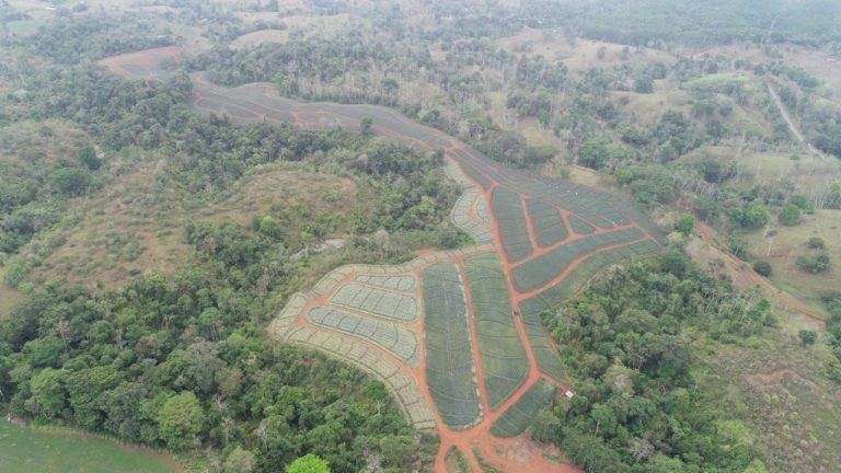 Farm Invest Costa Rica. Invest.
