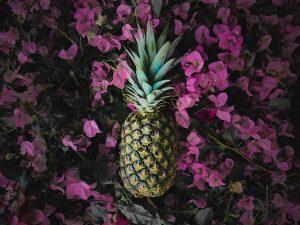 pineapple costa rica
