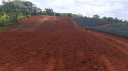 Farm invest Costa Rica. Land for sale